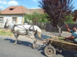 Pferdewagen mit winkendem Mann