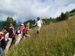 Eine Gruppe Wanderer in den grünen Karpaten
