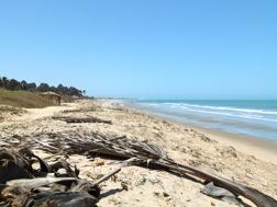 Ein einsamer Sandstrand, Meer bis zum Horizont, blauer Himmel