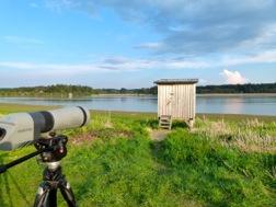 Ein Fernrohr ist auf einen Teich gerichtet, an dem auch eine Holzhütte als Versteck für Hobbyornithologen steht