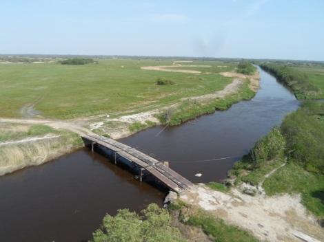 Eine offene Wiesenlandschaft in der Bucht von Matsalu, Estland