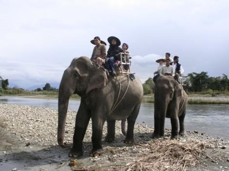 Touristen auf Elefanten - Indien - 2007
