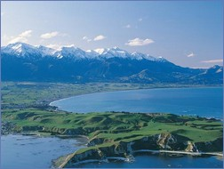Wild und schön präsentiert sich die Südinsel von Neuseeland, gut vernetzt per Schiene und Bus (Fotos: Whale Watch Kaikoura http://www.whalewatch.co.nz/)